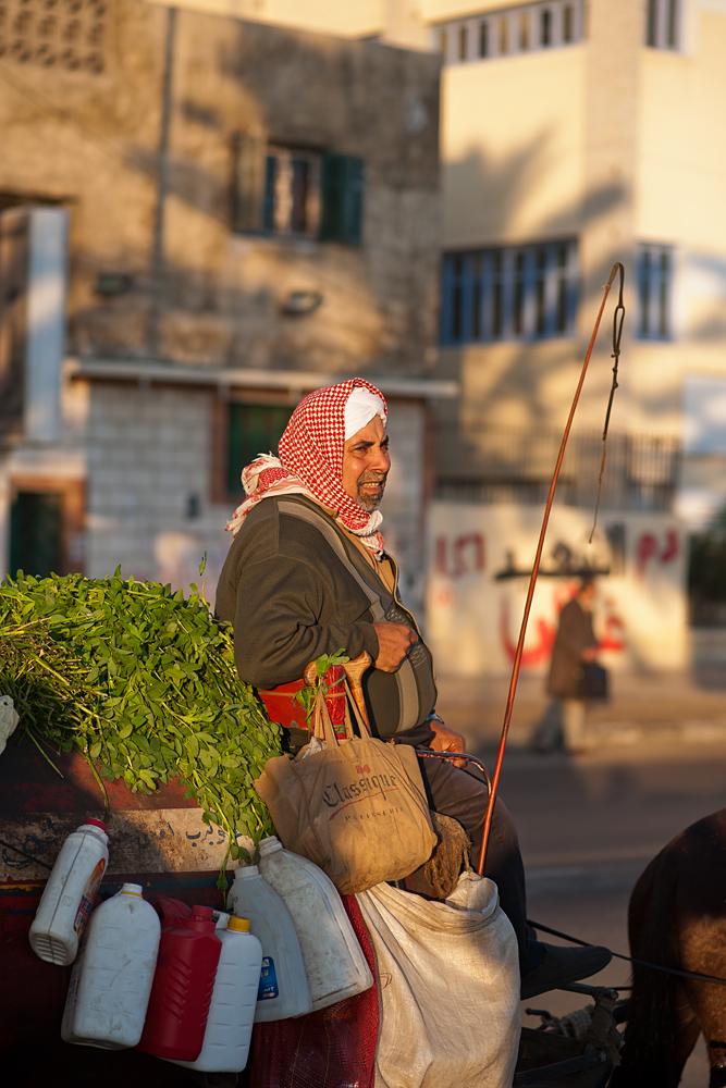 Die Strassen von Alexandria